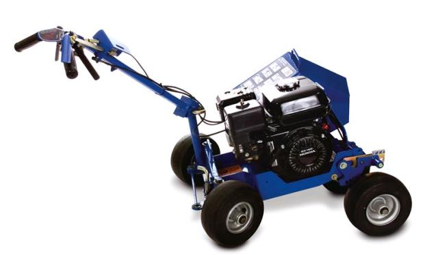 Where to find bedbug landscape edger 5 5hp in Scott Township and Montrose PA